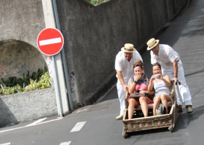 Carros de cestas